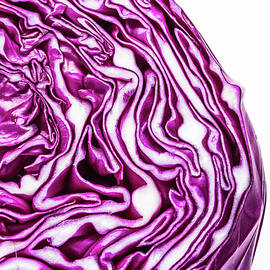 Cabbage Head by Teri Virbickis