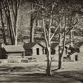 Cabins at Valley Forge by Bill Cannon