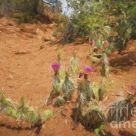 Cactus Along Trail  Paintography by Dan Friend