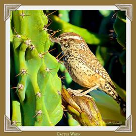 Barbara Zahno - Cactus Wren at Sunrise