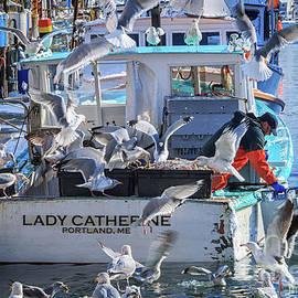 Elizabeth Dow - Cafe Lady Catherine