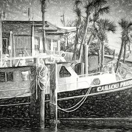 Cailloou Pride In Charcoal by Alice Gipson