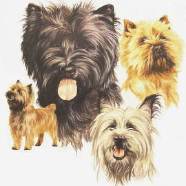Barbara Keith - Cairn Terrier