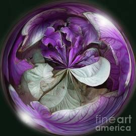 Brenda Spittle - Coleus and Caladiums Purple