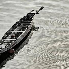 Brad Allen Fine Art - Calgary Dragon Boat