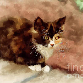 Calico Kitten by Lois Bryan