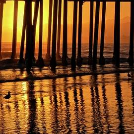 Flying Z Photography By Zayne Diamond - California Gold, Pismo Beach Pier, California
