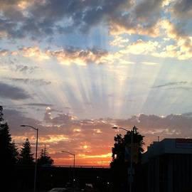 #california #sunset #nature