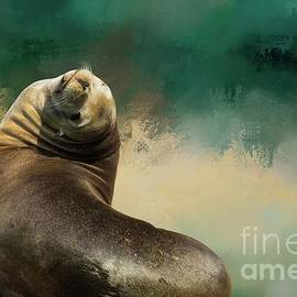 Californian Seal by Eva Lechner