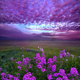 Phil Koch - Call To Me And I Will Answer You