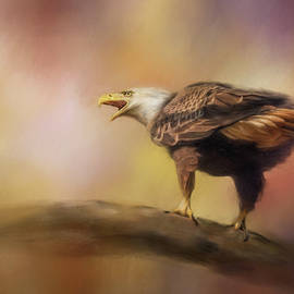 Jai Johnson - Calling Spring Bald Eagle Art