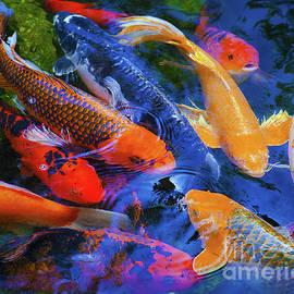 Jerry Cowart - Calm Koi Fish