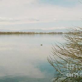 Calm Tranquility by Ana V Ramirez