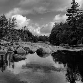 Calm Water on the Moose River 2 by David Patterson