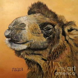 Marilyn McNish - Camel