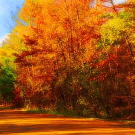 Daniel Thompson - Campfire Trail Fall
