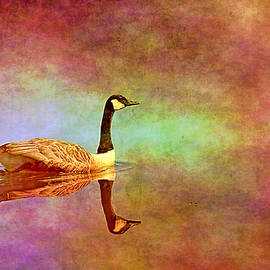 Canadian geese with textures by Geraldine Scull