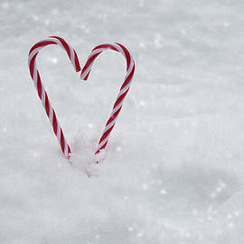 Candy Canes In Snow - Amanda Elwell