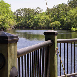 Cane Fishing Pole By The Waccamaw by MM Anderson
