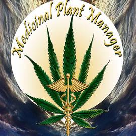 Cannabis Medicinal Plant by Michele Avanti