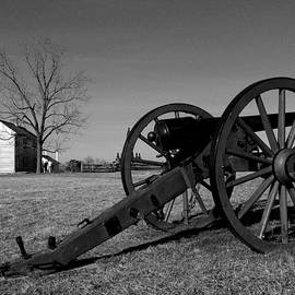 Cannon and the Henry House I by Steven Ainsworth
