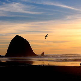 Shannon Louder - Cannon Beach Sunset