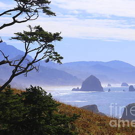 Cannon Beach View by Marty Fancy