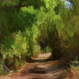 Linda Brody - Canyon Path I Painterly