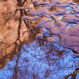 Anthony Bonafede - Canyon Reflections