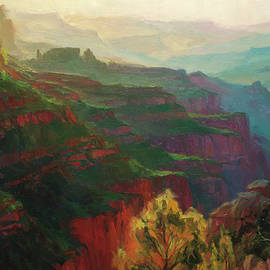 Canyon Silhouettes by Steve Henderson