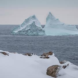 Crystal Fudge - Cape Bonavista Iceberg