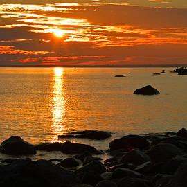 Dianne Cowen - Cape Cod Charms