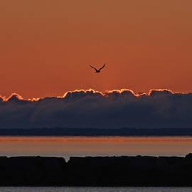 Cape Cod Sunrise #2 by Ken Stampfer