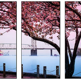 Cape Fear River Bridge Triptych by Karen Wiles