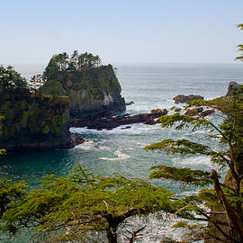 Stacey Lynn Payne - Cape Flattery Inlet Washington