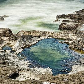 Cape Perpetua Tidal Pool - Oregon by Stuart Litoff