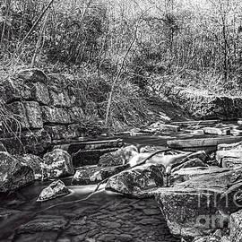 Caradocs Falls 2 Mono by Steve Purnell