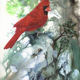 Cardinal by Sherry Shipley
