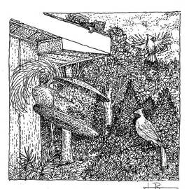 Jim Rehlin - Cardinals And Squirrels / black and white