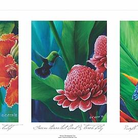 Caribbean Hummingbirds Triptych  by Christopher Cox