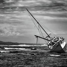 Caribbean Shipwreck in Cocoa by Norma Brandsberg