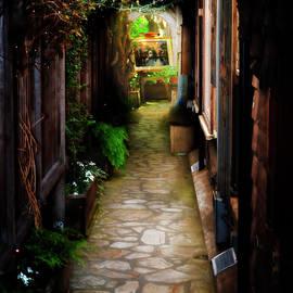 Carmel Alleyway by Bill Dodsworth
