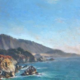 Dominique Amendola - Carmel Coast 2