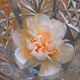 Carnation In Cut Glass 7 by Lynda Lehmann