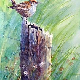 Gloria Turner - Carolina Wren