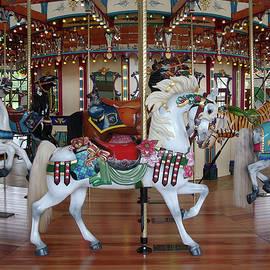 Carousel by Ann Horn