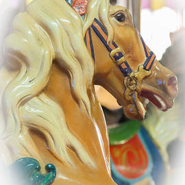 Carousel Horse Profile Seaside Heights New Jersey by Terry DeLuco