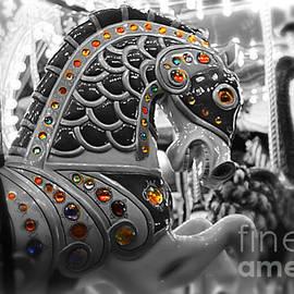 Carousel by Jenny Revitz Soper
