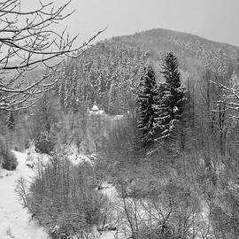 Carpathian Winter. Sheshory, 2010. by Andriy Maykovskyi