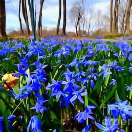 Carpet Of Blue by Ed Weidman